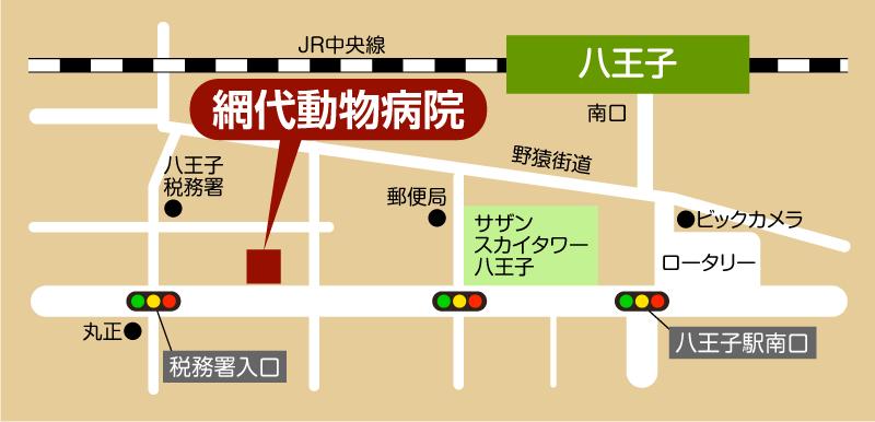 網代動物病院地図